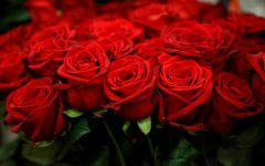 Red roses are displayed in a flower shop ahead of Valentine's Day in Paris, France, February 12, 2021.  REUTERS/Sarah Meyssonnier    NO RESALES. NO ARCHIVES